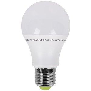 фото Светодиодная лампа (энергосберегающая) EUROLAMP LED A60 12W E27 4000K