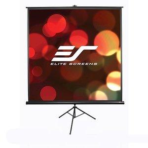 фото Проекционный экран ELITE SCREENS T120UWH